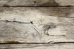 Weathered real oak wood texture, weathered by time from exposure to the eleme Stock Photos