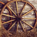 Stock Photo of old wooden wheel on a hay