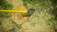 Axe ax in stump ground tree Stock Footage