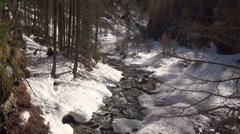 Alpine forest stream winter landscape Stock Footage