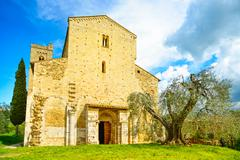 Sant antimo montalcino church and olive tree. orcia, tuscany, italy Stock Photos