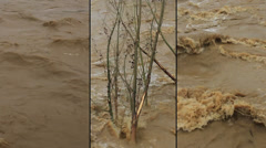 Triptych Muddy River Stock Footage