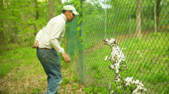 Old man dog dogs kennel Stock Footage