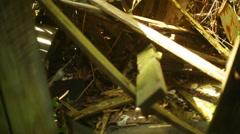Storm damage debris wood tornado abandoned Stock Footage