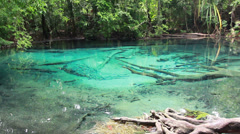 Blue lake, Spring Pool is the origin of emerald pool. Stock Footage