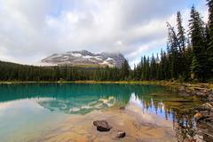 lake o'hara, yoho national park, british columbia, canada - stock photo