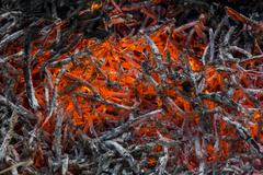 glowing embers and ashes in a fire - stock photo