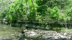 Creek  fly Stock Footage