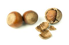 Closeup raw hazelnuts white isolated - stock photo