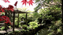 Japanese Gardens 1 Stock Footage