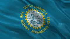 US state flag of South Dakota - seamless loop Stock Footage
