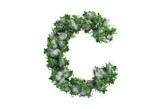 Stone letter C covered with ivy, isolated - stock illustration