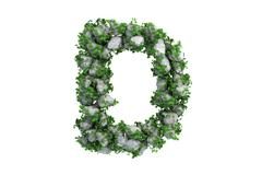Stone letter D covered with ivy, isolated - stock illustration