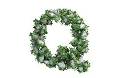 Stone letter Q covered with ivy, isolated - stock illustration
