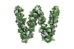 Stone letter W covered with ivy, isolated - stock illustration