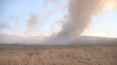 Wide shot of burning field Stock Footage