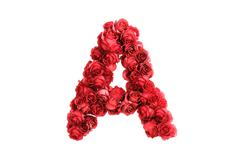 Red roses letter A, isolated on white background - stock illustration