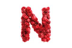 Stock Illustration of Red roses letter N, isolated on white background