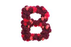Aster flowers letter B, isolated on white Stock Illustration