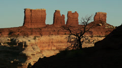 Canyonlands National Park the Maze Chocolate Drops Butte with Tree Stock Footage