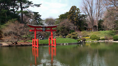 Japanese garden spring at the Brooklyn Botanical. - stock footage
