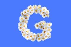 Camomile flower letter G - stock illustration