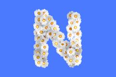 Stock Illustration of Camomile flower letter N