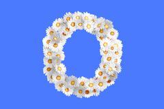 Camomile flower letter O - stock illustration