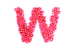 Pink violets letter W - stock illustration