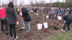 Tree planting event for earth day in Toronto Stock Footage