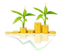 Gold coins and plant isolated on white Stock Illustration
