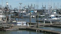 Marina Docks and Fishing Boats Stock Footage