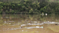 Ecological disaster, large amount of garbage in the lake after storm. - stock footage