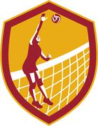 Volleyball player spike ball net retro shield Stock Illustration