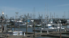 Marina Docks With Fishing Boats and Crab Boats Stock Footage