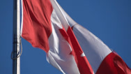 Stock Video Footage of Flag Of Canada - 01 - Windy - Very Close
