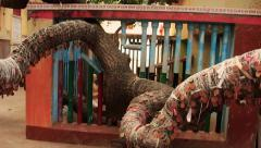 A sacred tree at Siddha Bakula in Jagannath Puri, Orissa/Odisha India. Stock Footage