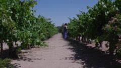 Women in vinyard 2d Stock Footage