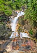 Stock Photo of evergreen forest waterfall