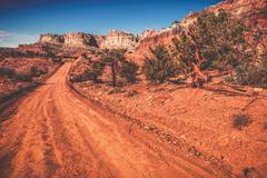 utah wilderness road. sandy backcountry utah road. united states. - stock photo