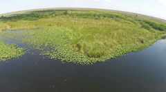 Aerial view of the Florida Everglades Stock Footage