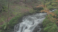 Lake Windermere Waterfall Stock Footage