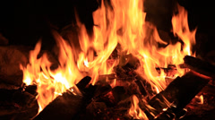 Bonfire burning trees at night. Bonfire burning brightly, heat, light,camping - stock footage