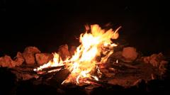 Bonfire burning trees at night. Big bonfire Stock Footage