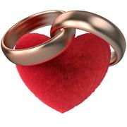 gold rings and fur heart - stock illustration