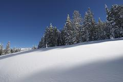 snowy hills. colorado wilderness covered by fresh snow. sunny winter weather. - stock photo
