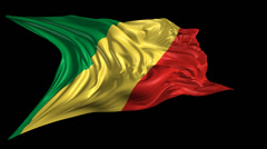 Flag of Republic of Congo Stock Footage