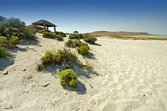 salt lake landscape in utah state, united states of america. sandy salt lake - stock photo