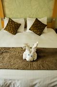 White brown bedroom with white plush toy on the brown bed cover. Stock Photos