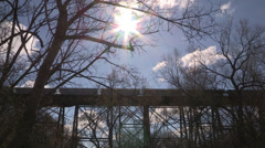 Train going over trestle in on bright sunny day Stock Footage